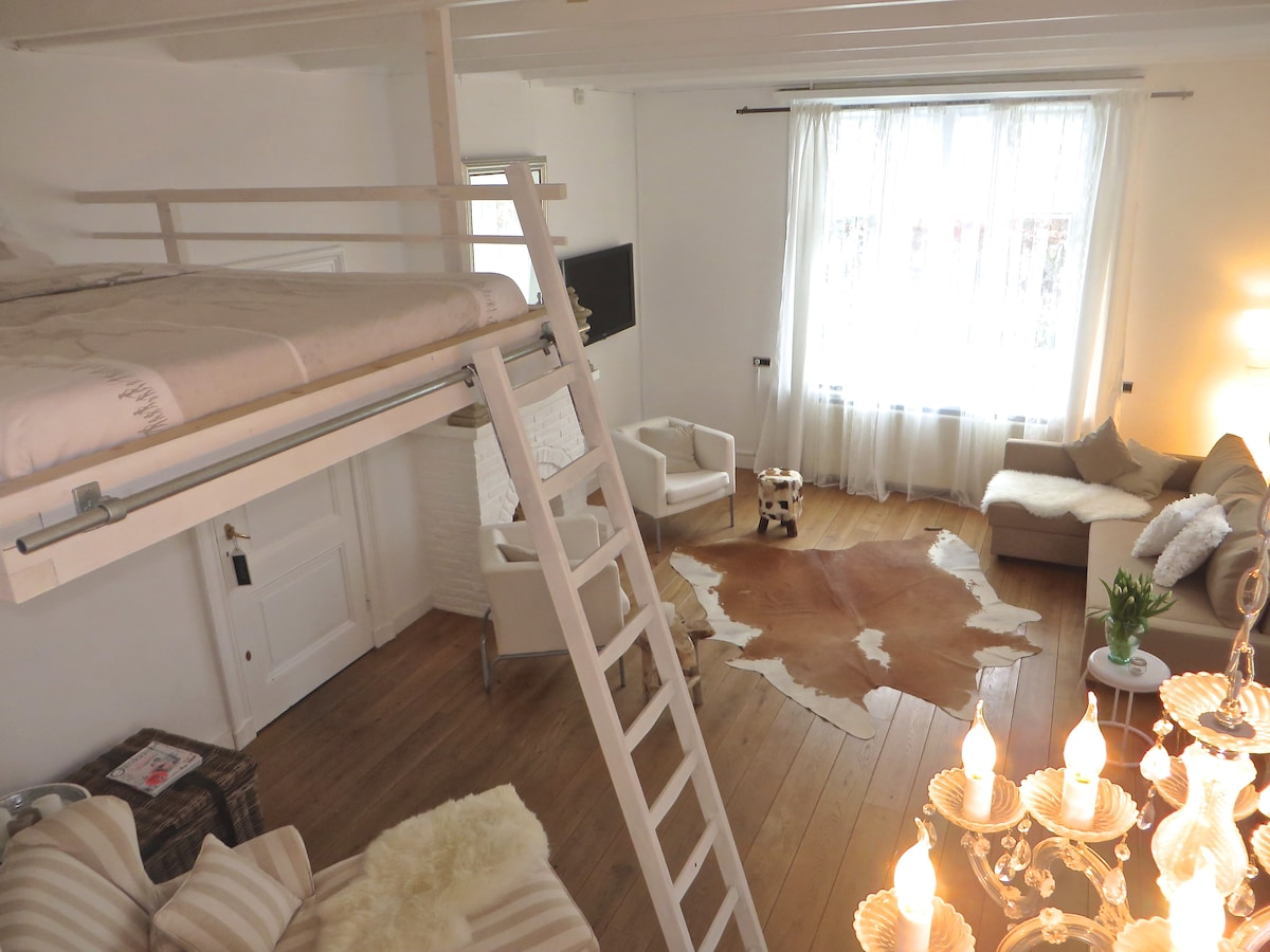 Spacious & bright room in old farm
