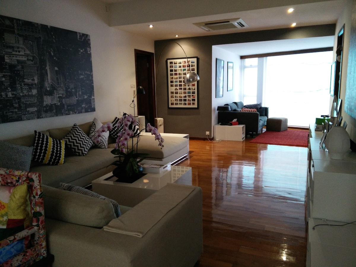 Spacious Apartment with Rooftop Den