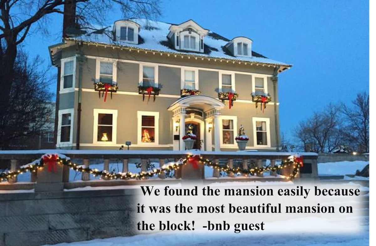 Gilded Age Mansion Dwntwn (2 of 3)