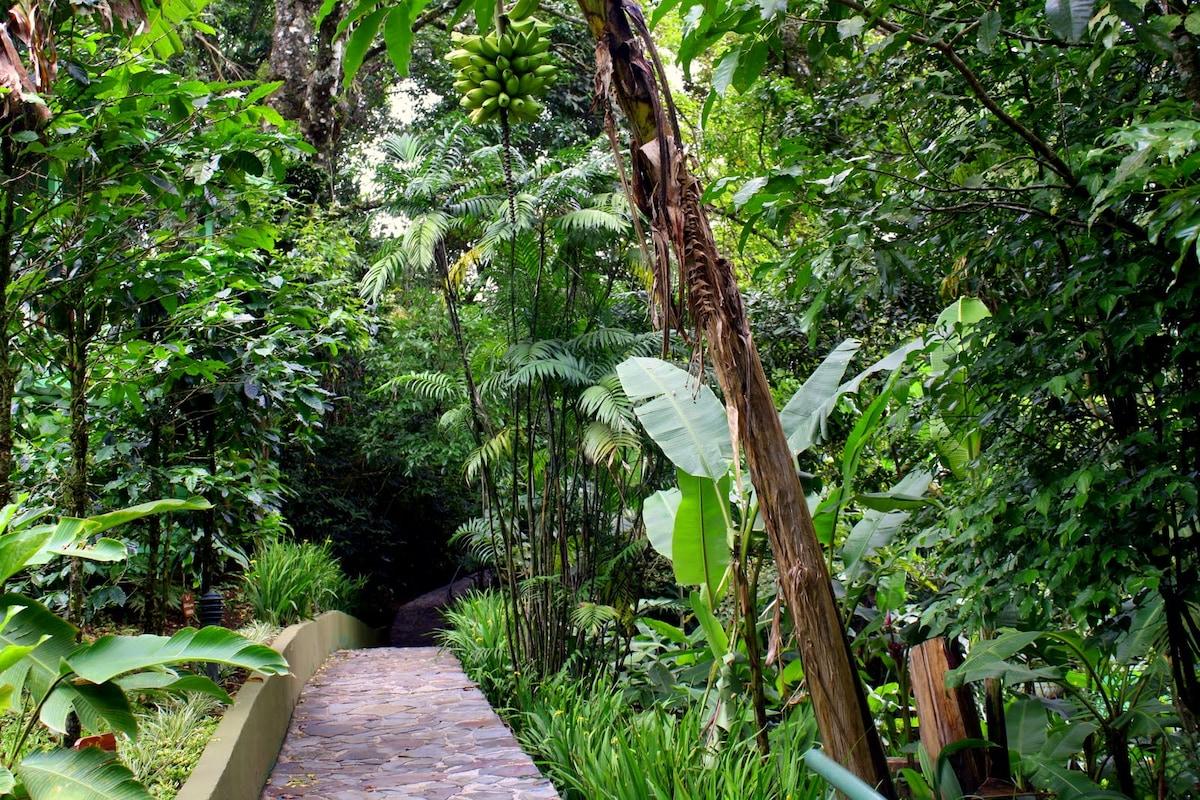 Monteverde Luxury Hostel Private