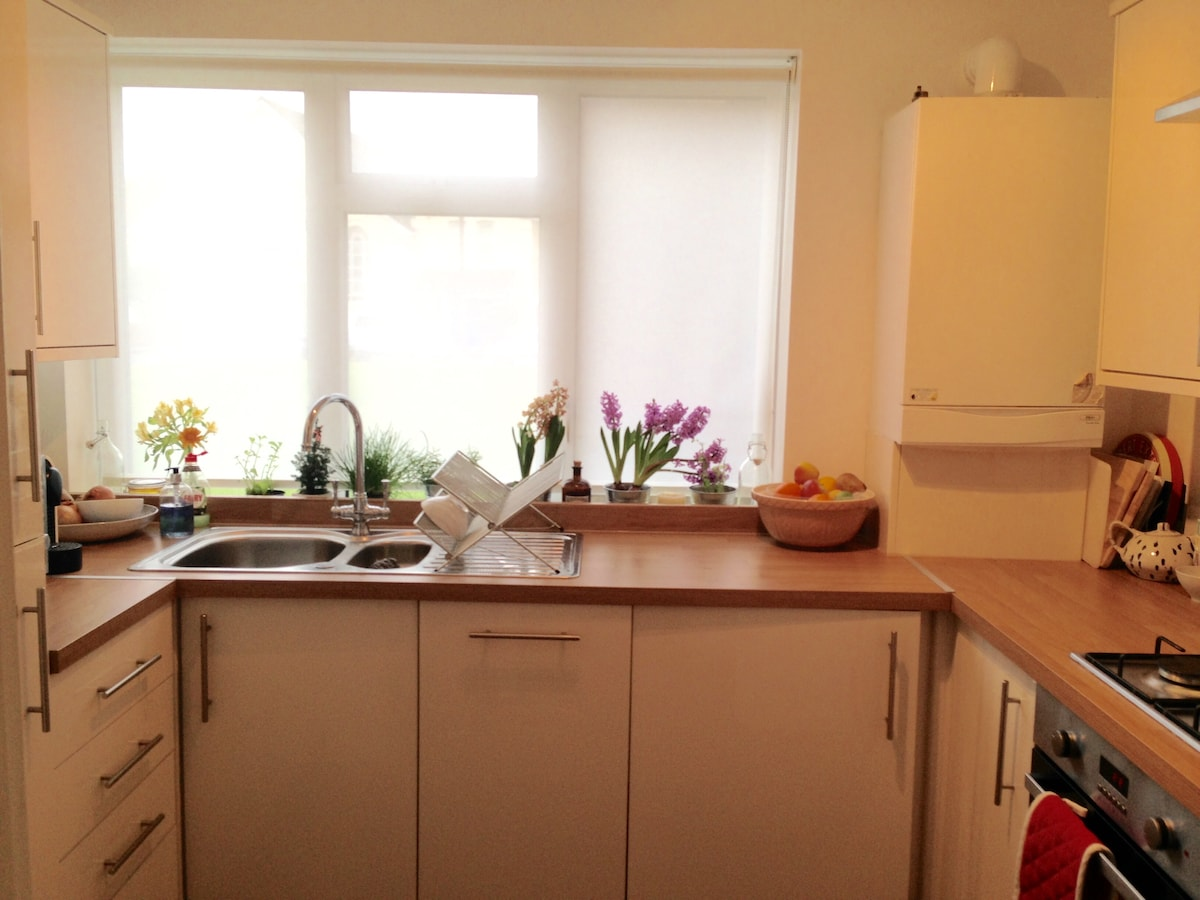 Newly renovated flat in Chiswick