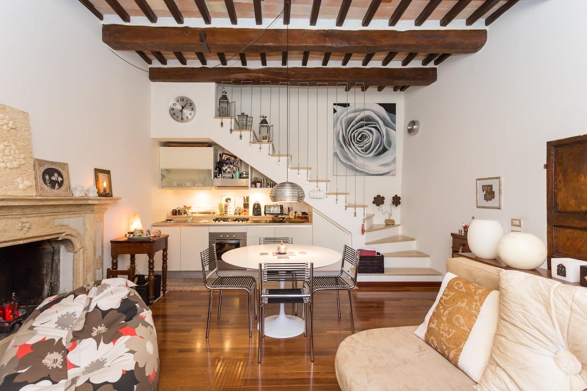 Luxury apartment in historic centre