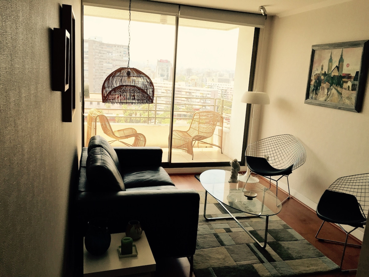 Great Private Room in Providencia