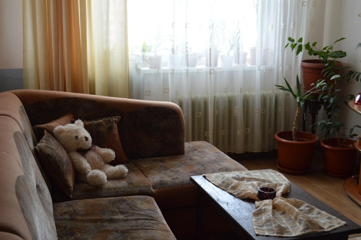 Cosy apartment near metro