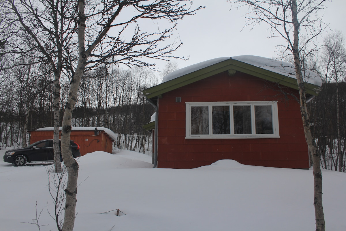 Cosy cottage on Geilo