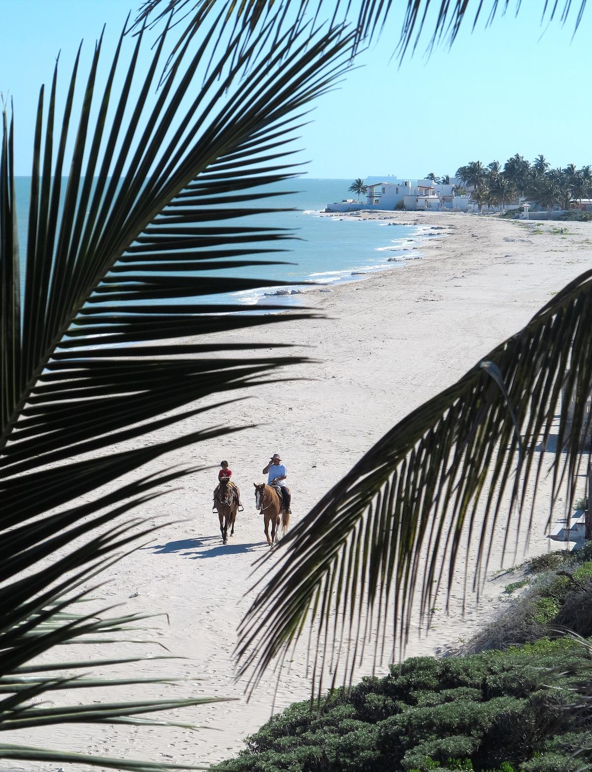 B&B Flamingos Inn CIELO Beachfront