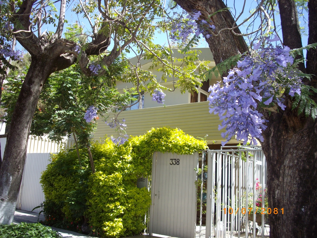 A different season for all occasions-this being Spring at the front gate.