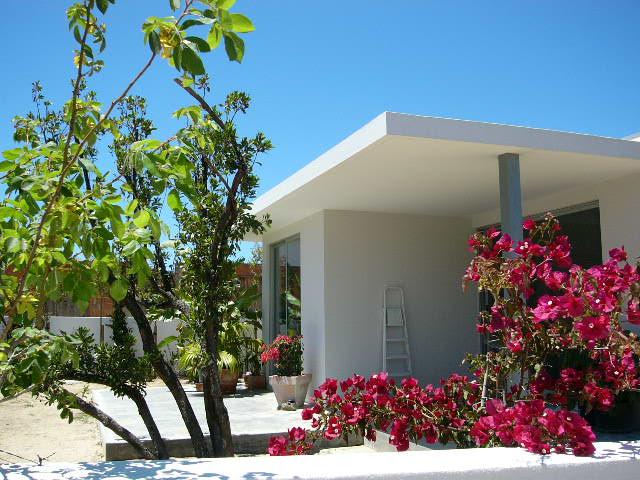 House with tropical garden