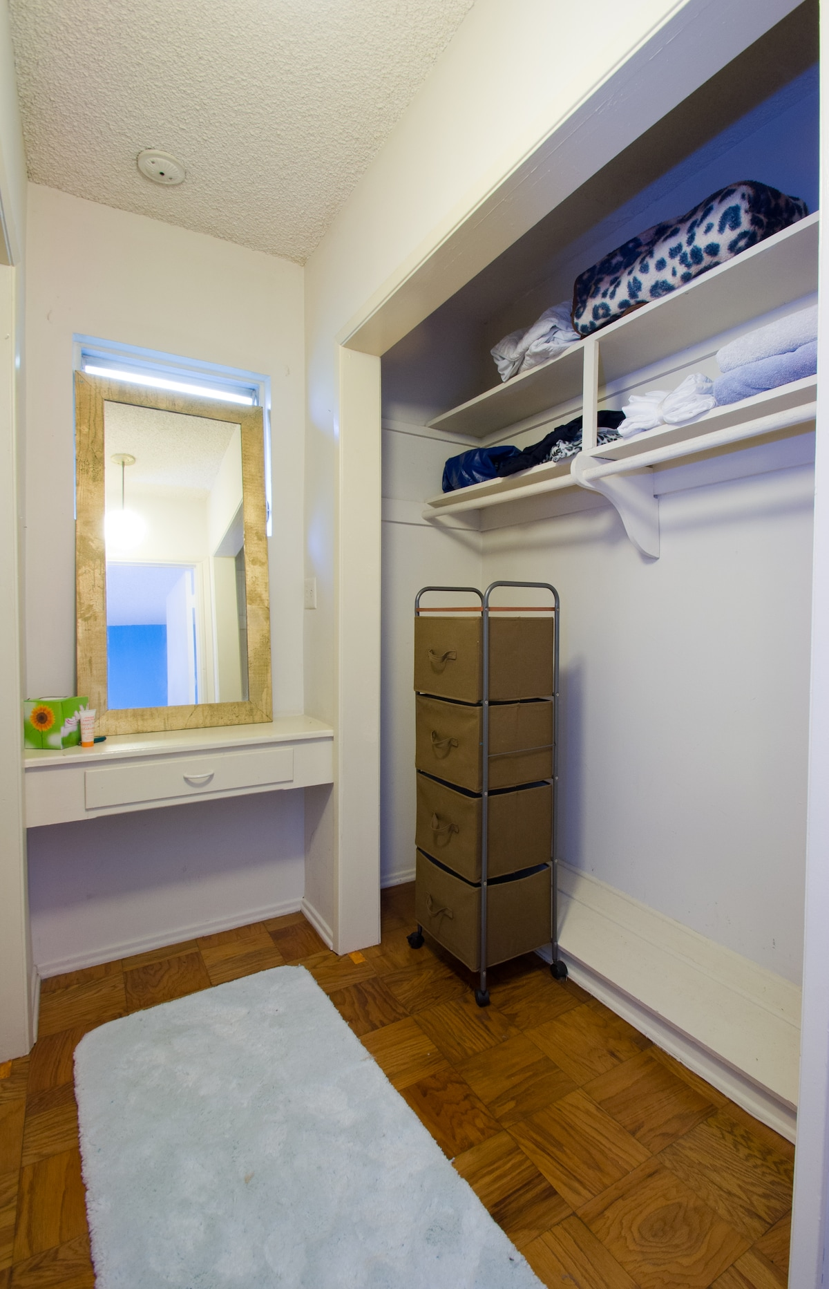 Guest Bedroom: Walk in Closet