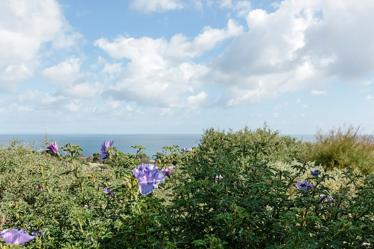 Stunning bay views!