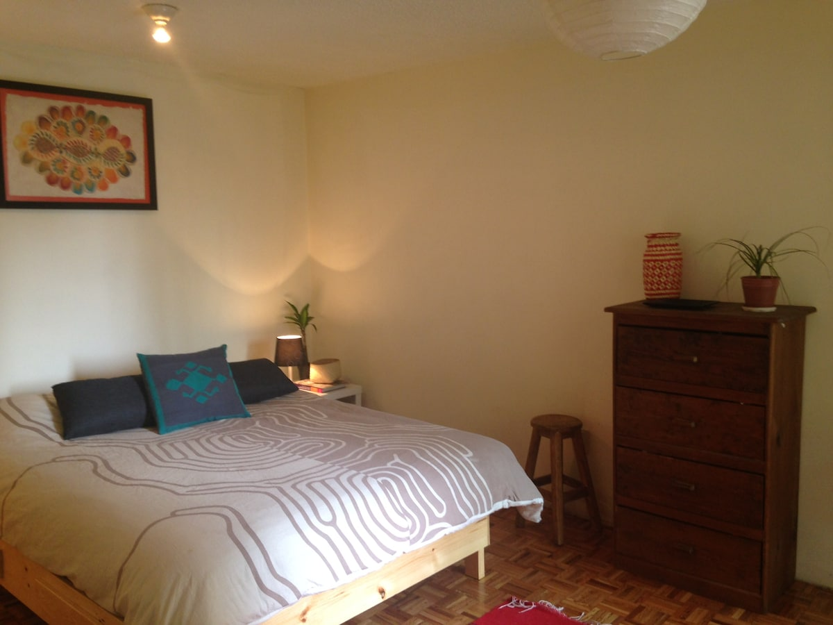 Lovely private room in Coyoacan