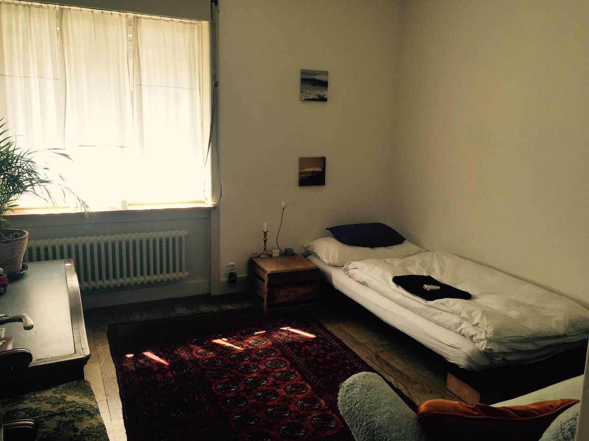 Your room in the middle of Zurich