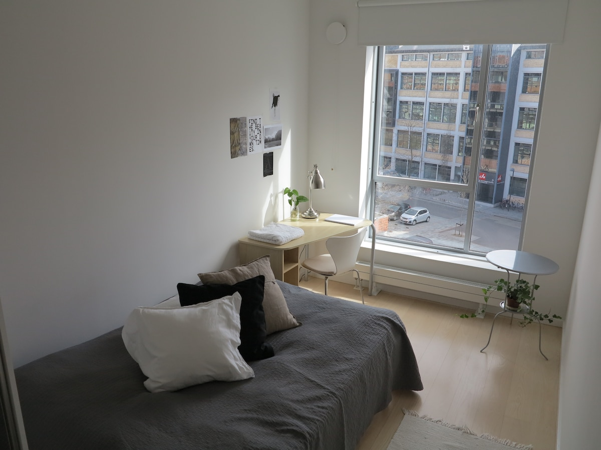 Copenhagen Scandinavian Room WIFI