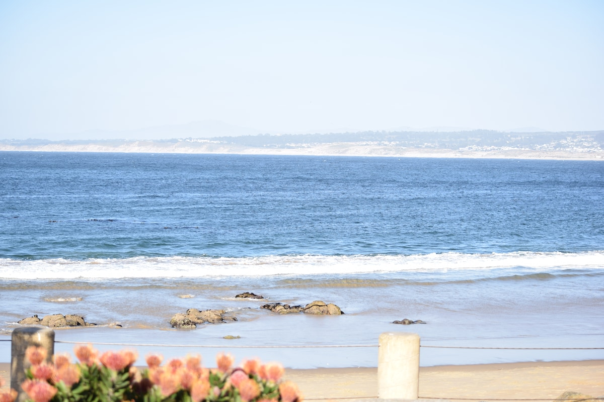 Perfect Monterey Beach Apartment