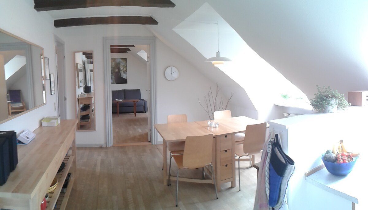Big appartment in central Odense