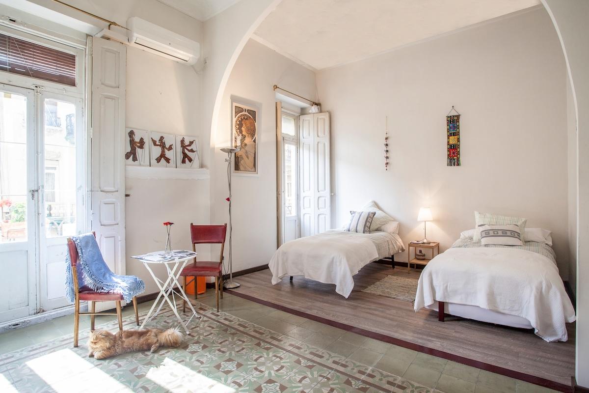 Cozy Spacious double bedroom