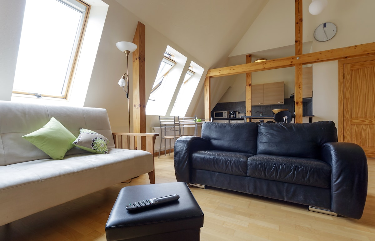 Large, comfortable living room with TV, Wi-Fi internet, radio, CD, double pull-out sofa.