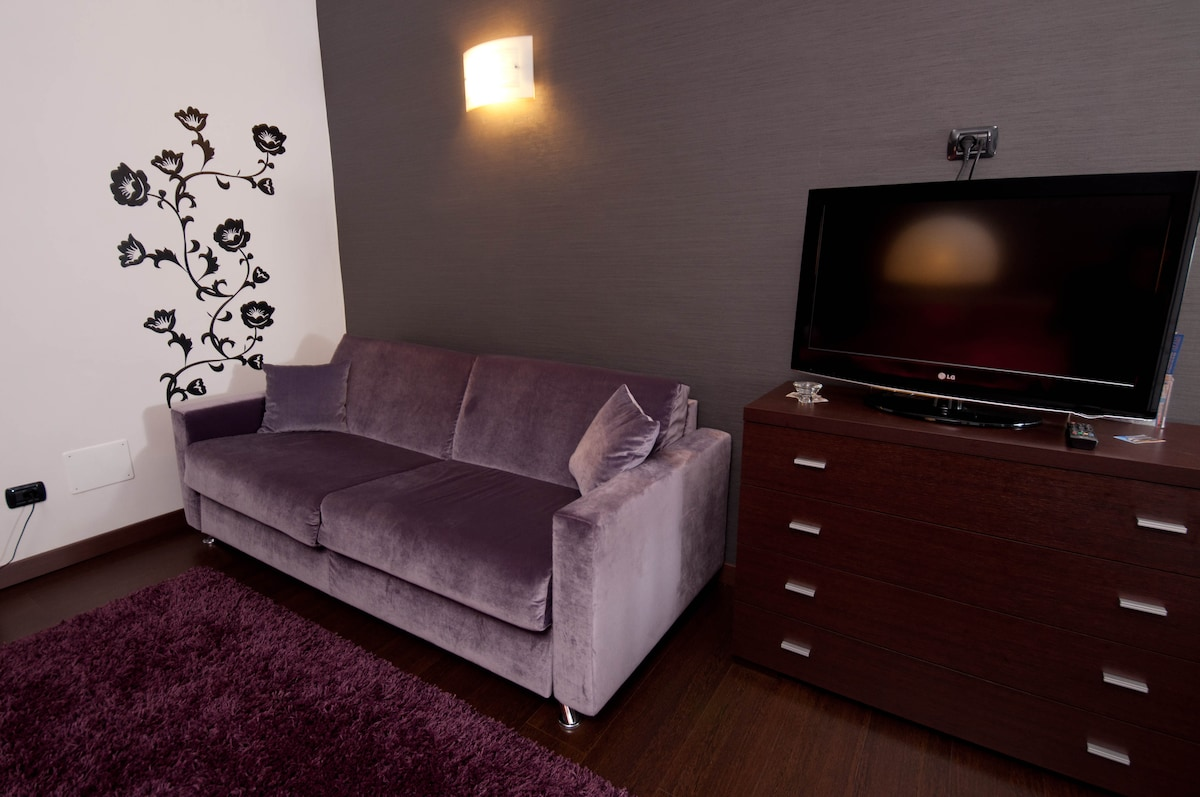 Comfortable Double sofa-bed