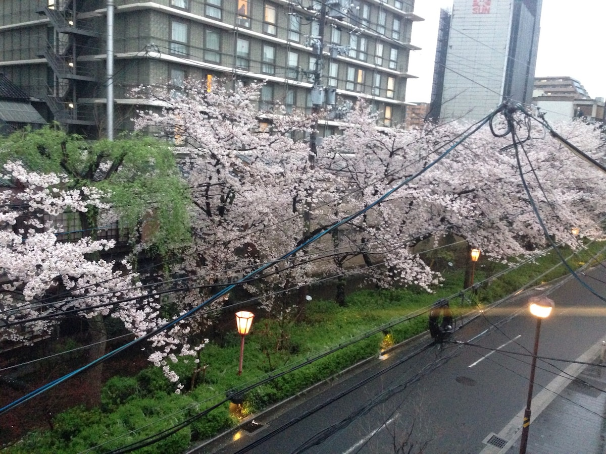 Riverside Central Kyoto(Roomshare)