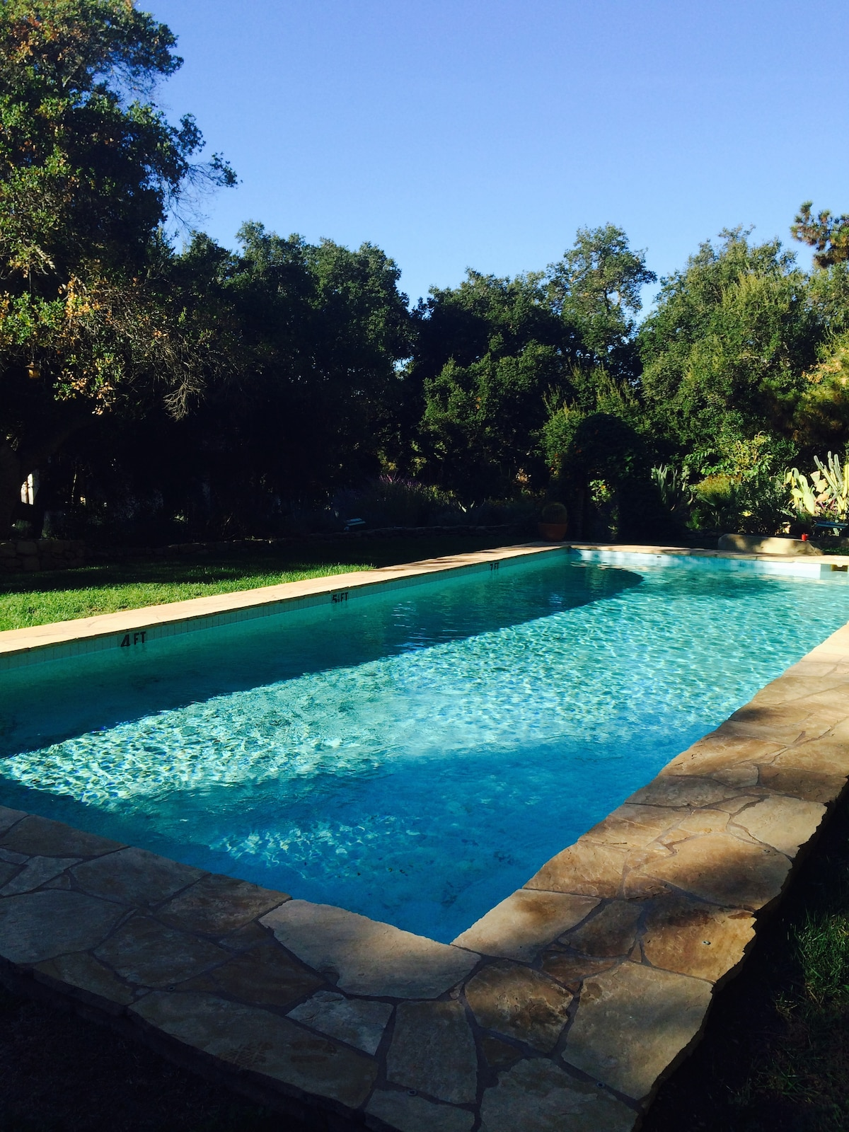 Chic Designer Home Pool and Gardens