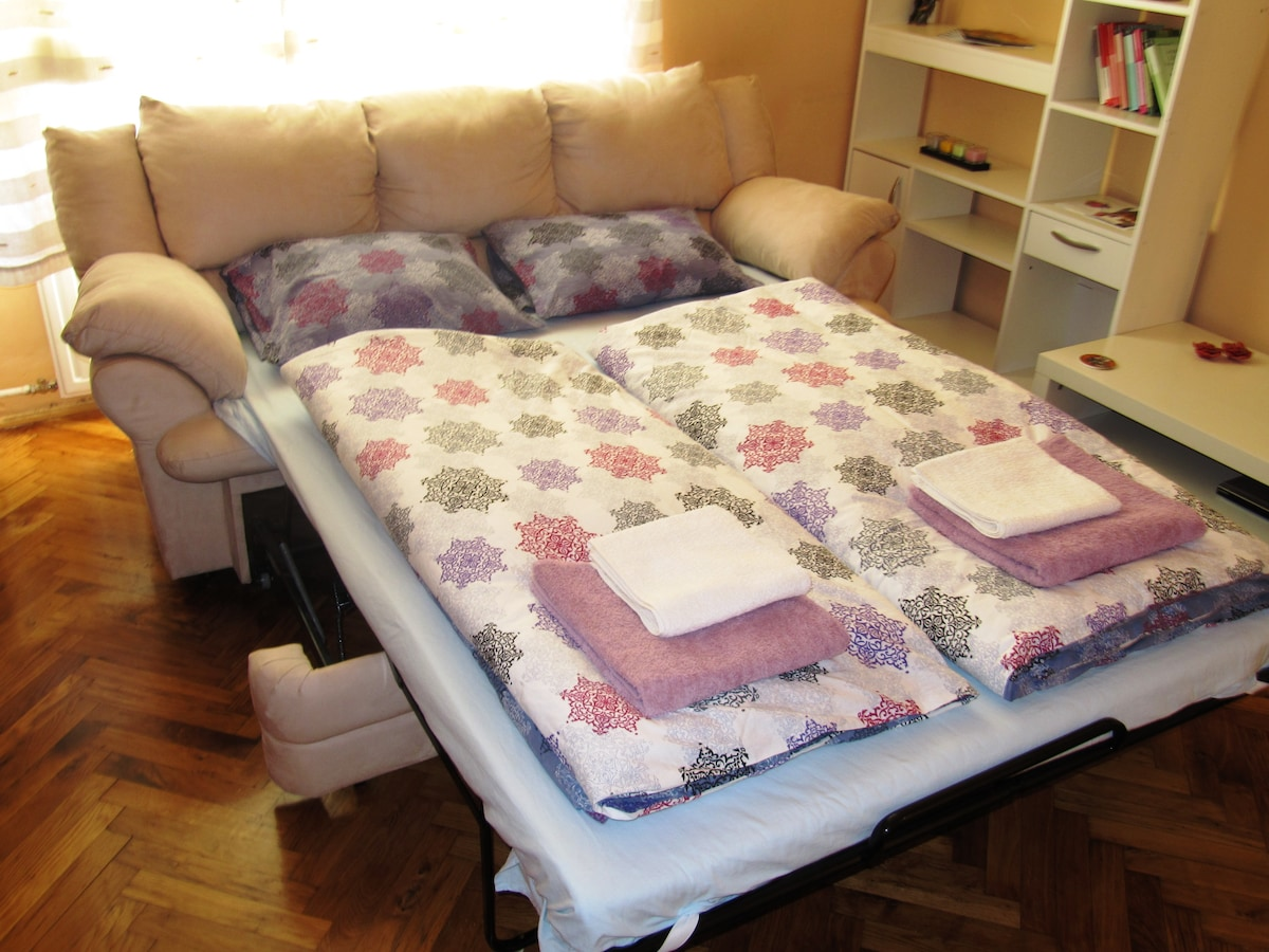 comfortable pull out sofa bed