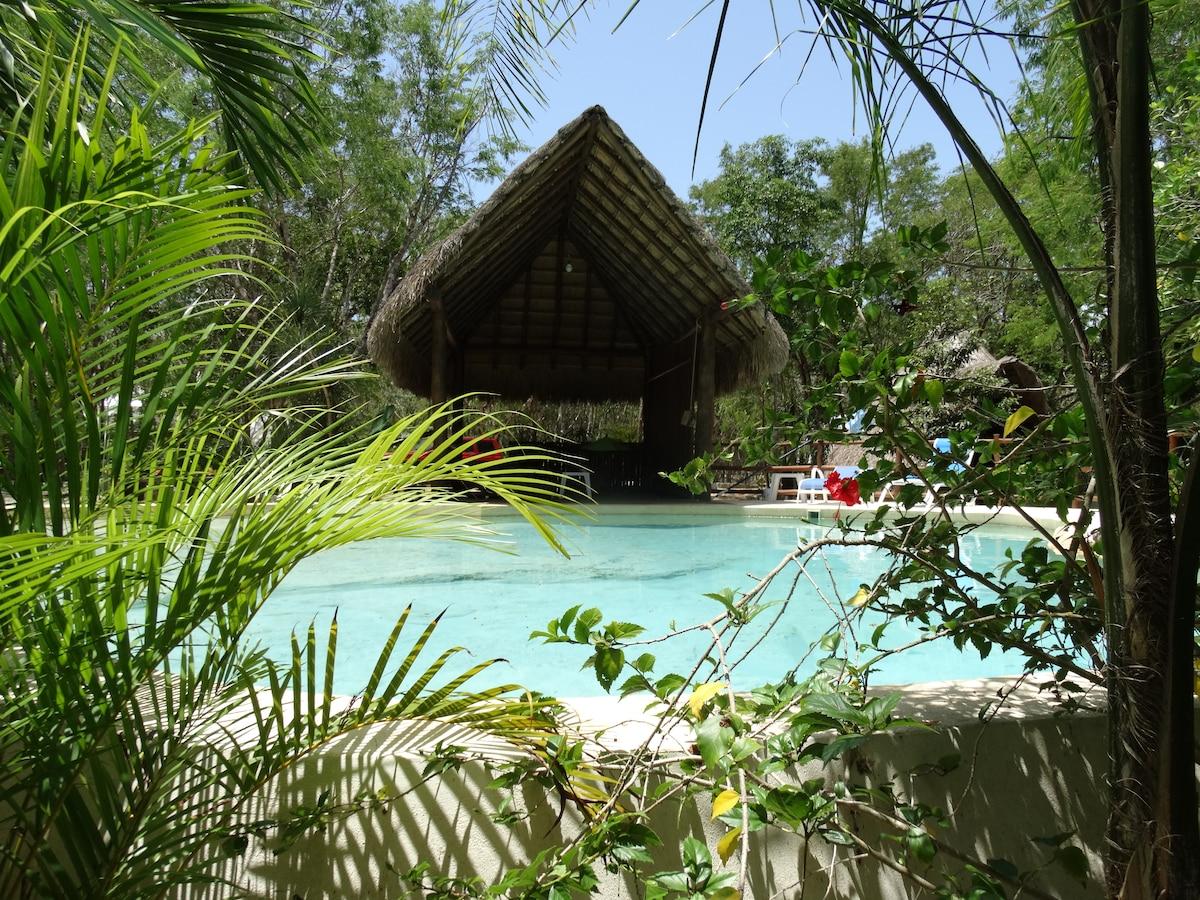Pool + Cenote: Room Violeta