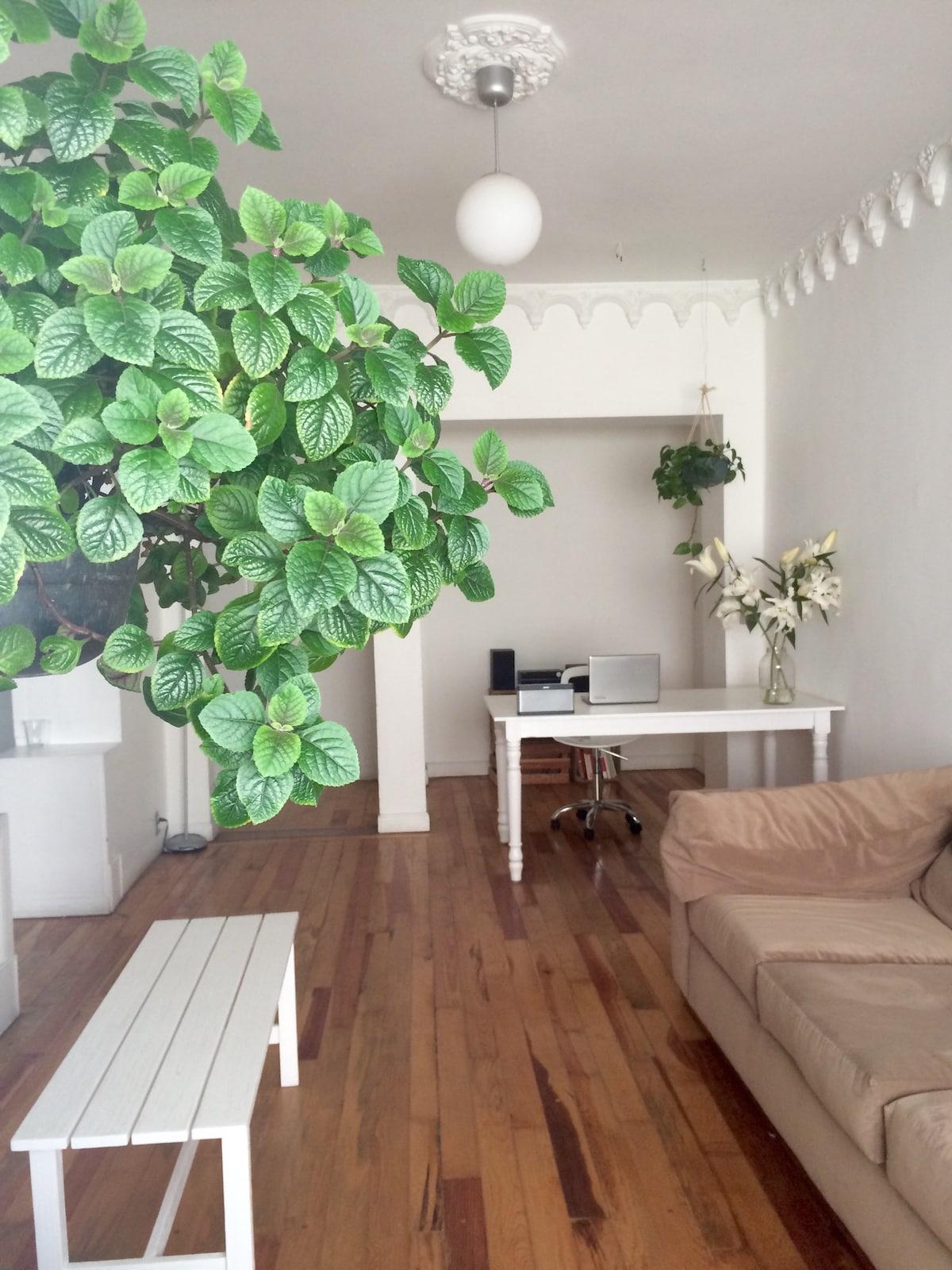 Sunny, at Condesa; full apartment