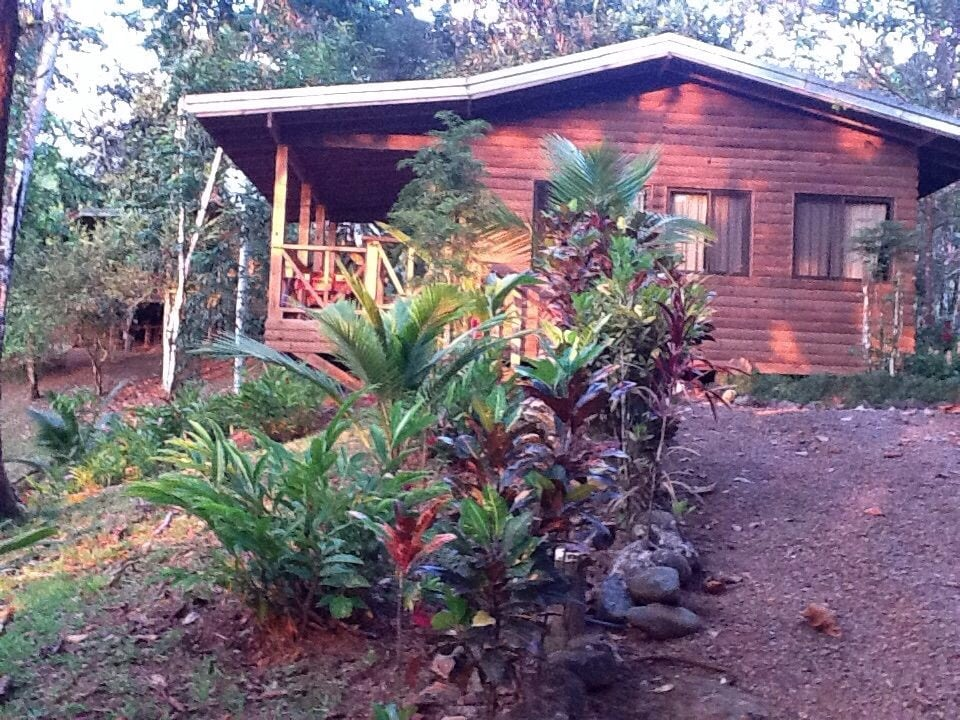 Peaceful Jungle Bungalow Stressfree