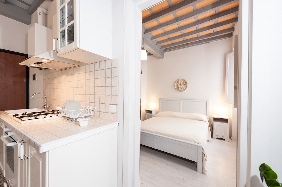 THE APARTMENT IS COMPLETELY RENOVATED WITH CARE AND STYLE
