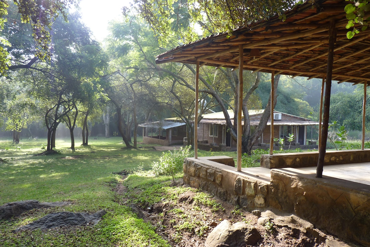 Jungle Hut Resort and Homestay