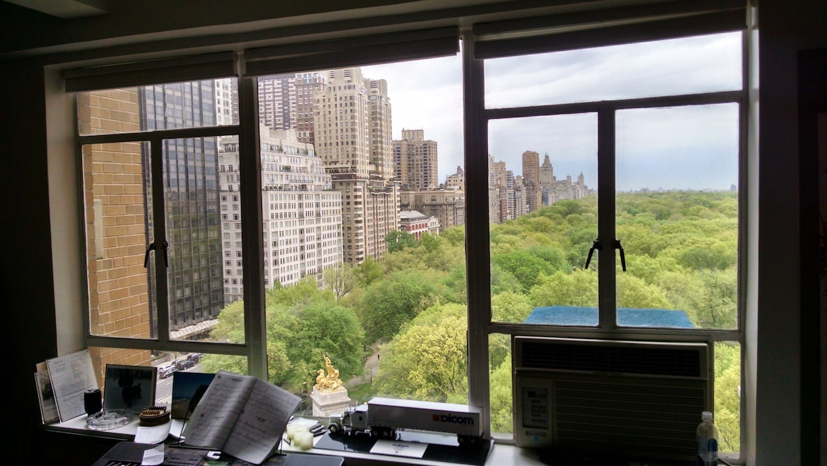 Apartment on Central Park South
