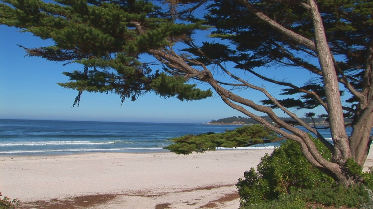 Private BR in Carmel-by-the-Sea