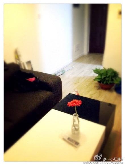 宜家小房,全新, IKEA Apartment,Clean!