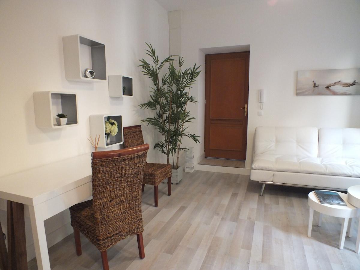 1 bedroom apt, quiet, in the center