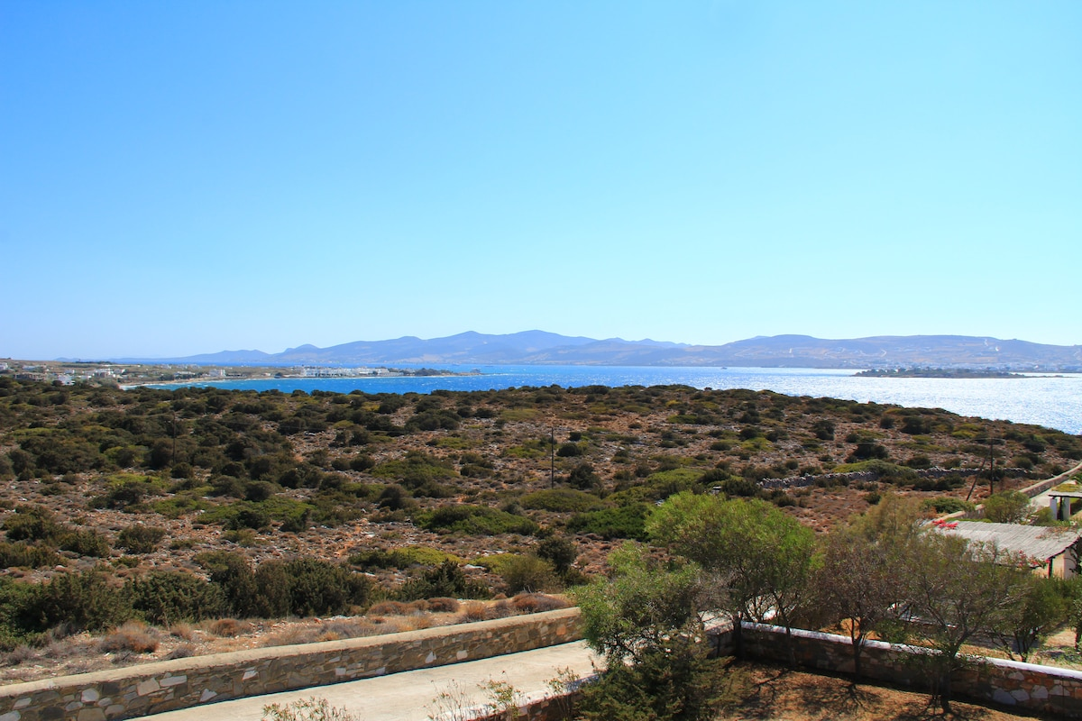 Dream Villa in Paros, Privacy and Breathtaking Views!