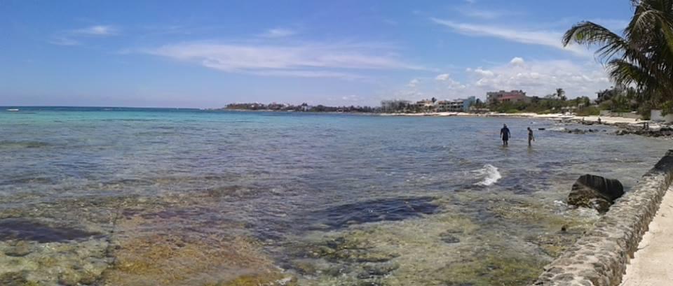 Lovely ocean view condo