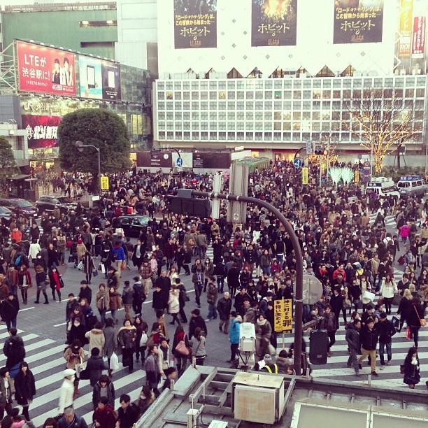 Stay near the Shibuya crossing!!