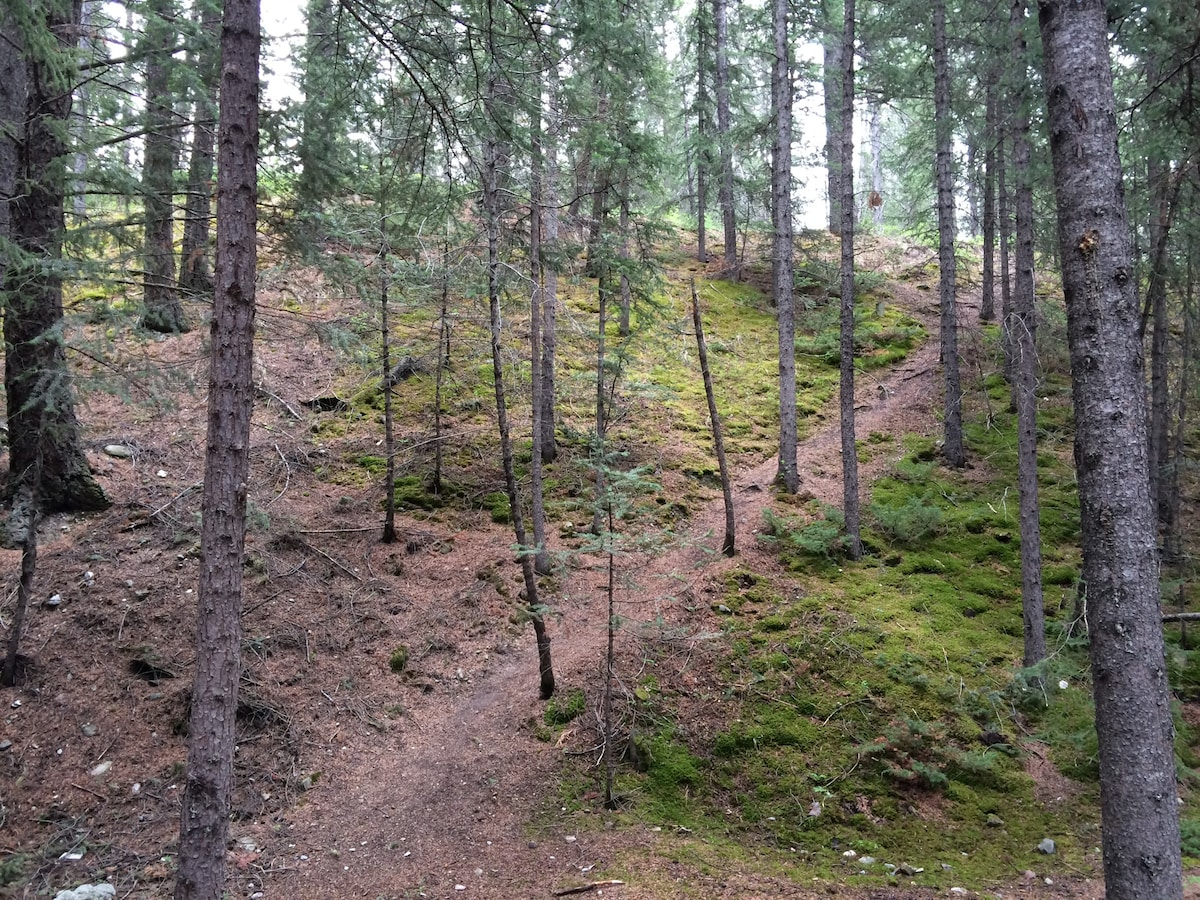 Mountain Getaway Pad