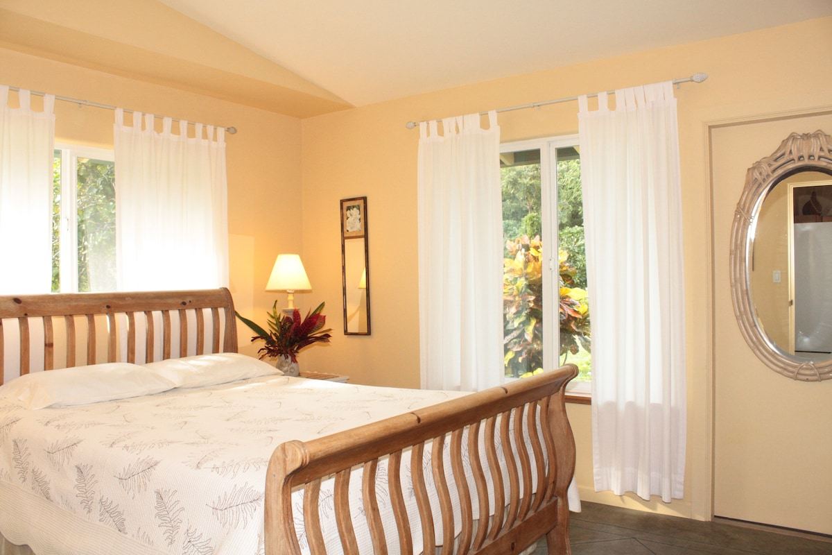 The bedroom has a very comfortable queen sleigh bed, large windows, and an ample closet