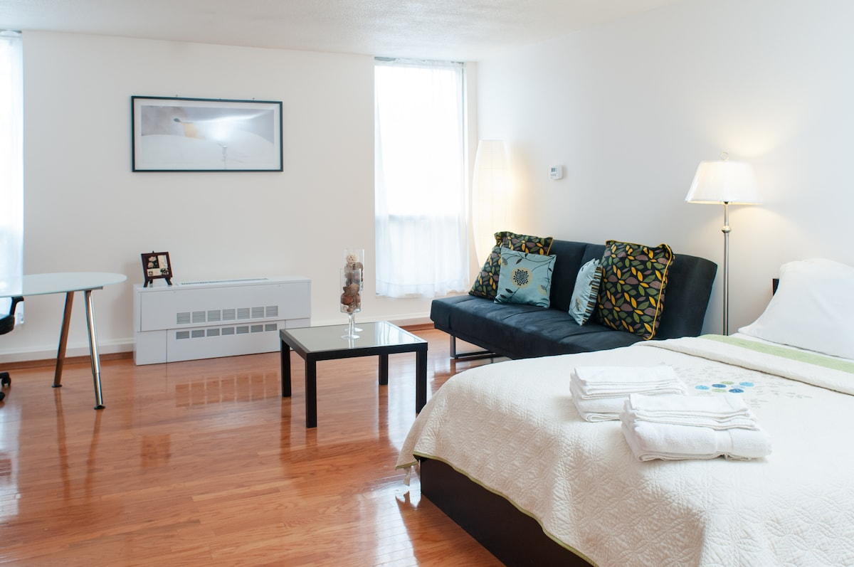 Spacious Studio  Boston-Longwood