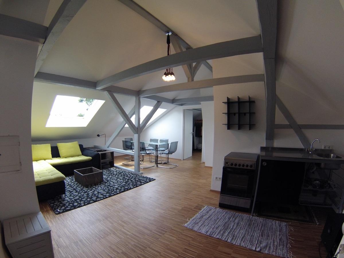 attic floor..cozy apartment 2 rooms