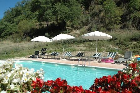 Bellissimo app in casale con piscina: La Tana