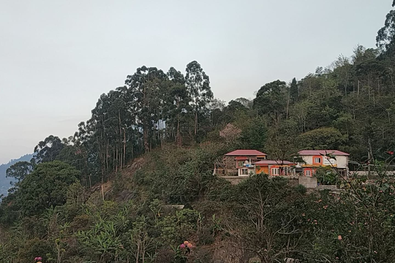 The property Swaashramam, amidst the farm