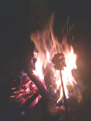 Bonfire Times