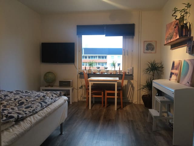 Studio for 1-3ppl, 1,5km walk from City! - Borlänge - Apartment