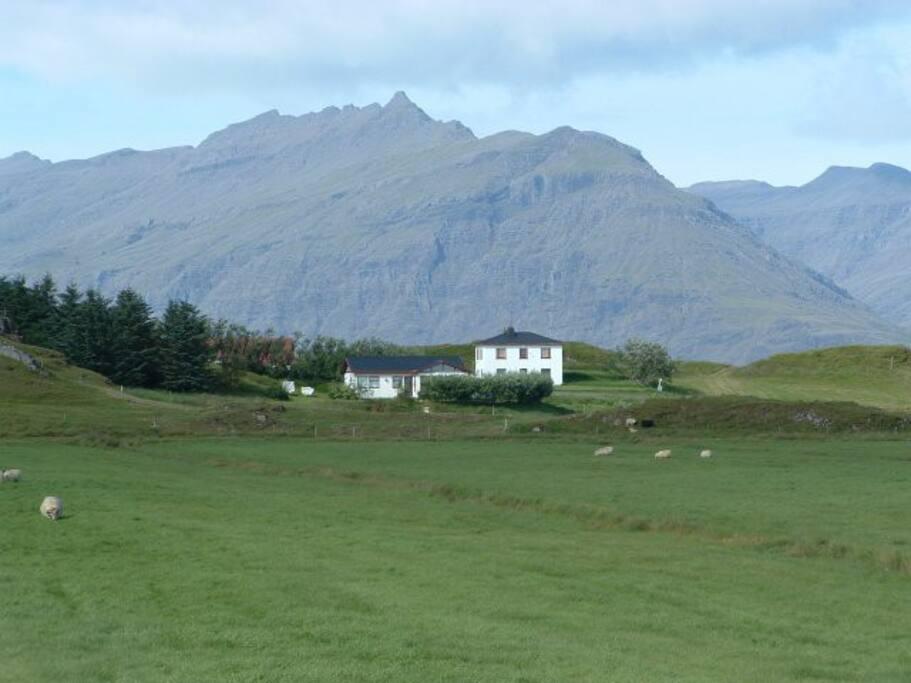 Farm Holmur