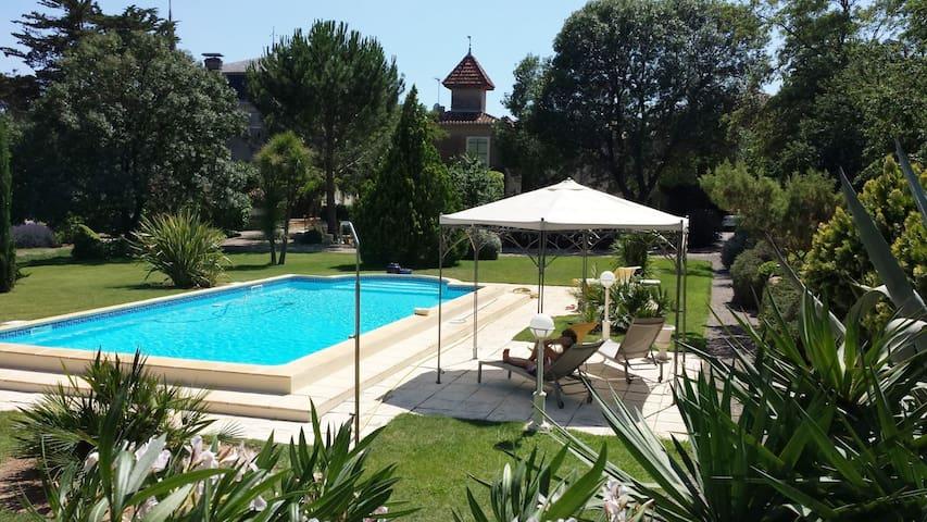 Villa avec piscine entre parc, vignes et pinède