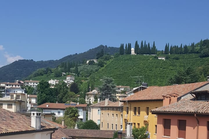 IL GELSOMINO