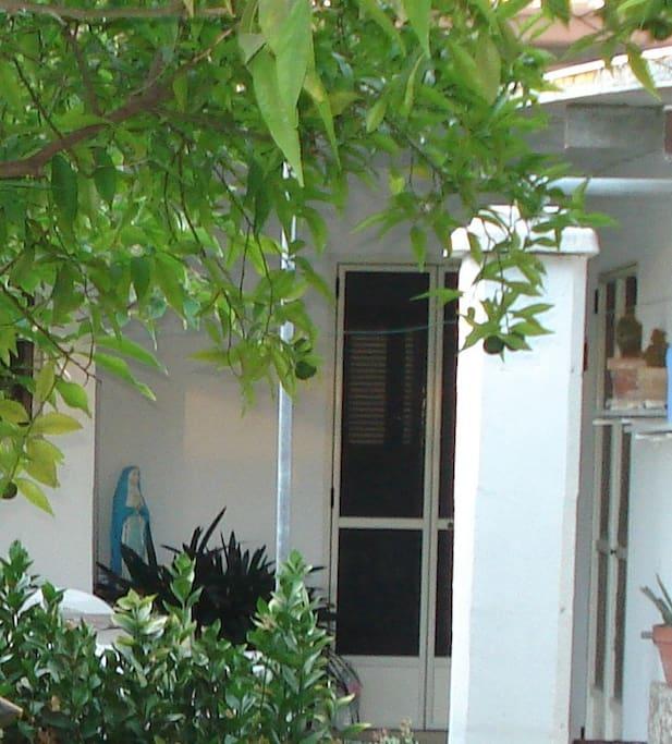 ampio giardino della casa