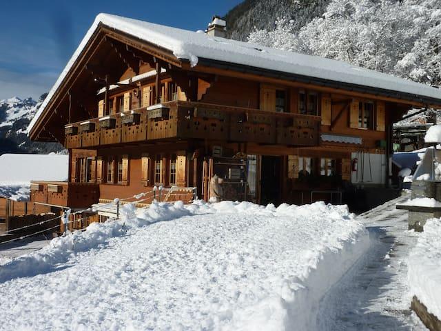 Bachsbort - exklusive Ferien mit Hotelservice